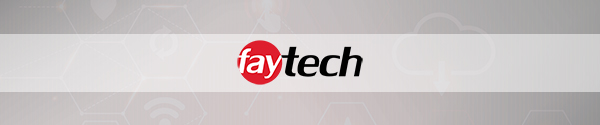 meaning for faytech AG